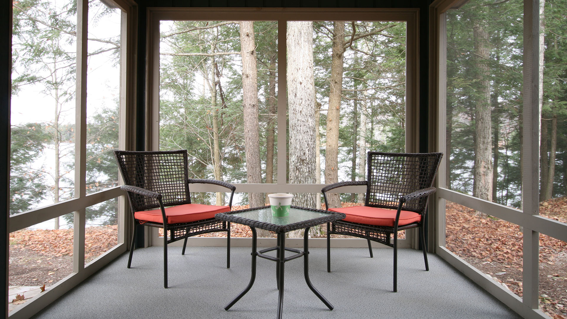 architect designed cottage - lake of bays muskoka - private screen porch